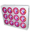 Nova LED S12
