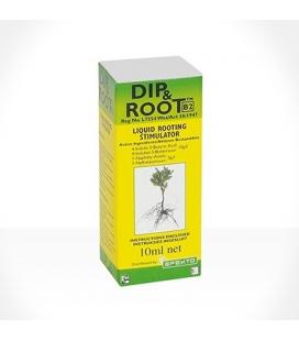 Dip & Root 10ml