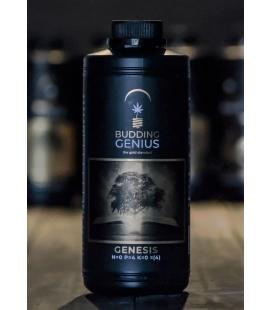 Budding Genius Genesis
