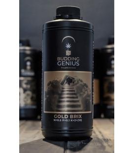 Budding Genius Gold Brix