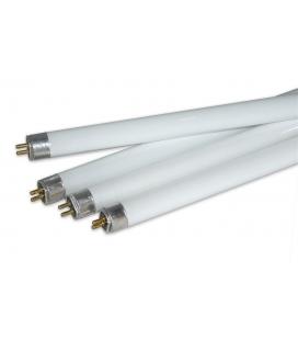 Bulb - T5 2' 24w 6400k