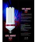 CFL 250w 2700k (Warm White)