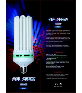 CFL 250W 6400k Cool white