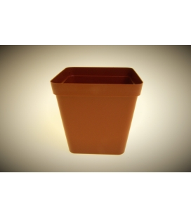 Square Pot 12.5cm