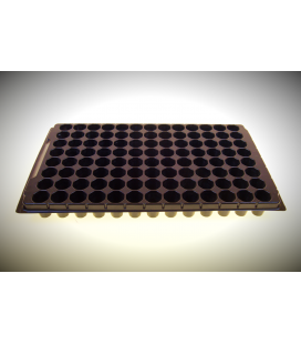 Seed Tray 104 pot/30mm